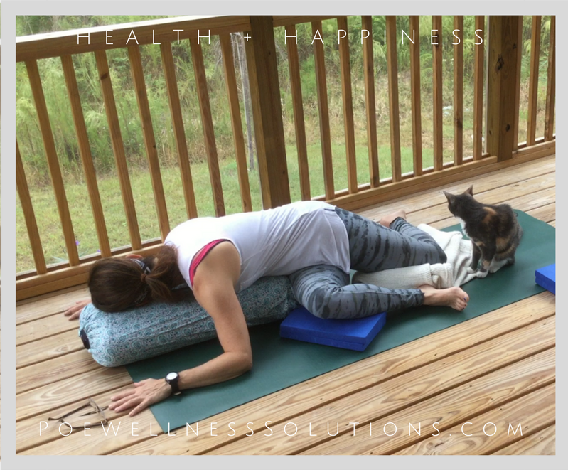 Yin Yoga Foundations Series – Session 5 –  Total Body