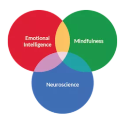 Attended Mindfulness Leadership Training ~ Search Inside Yourself