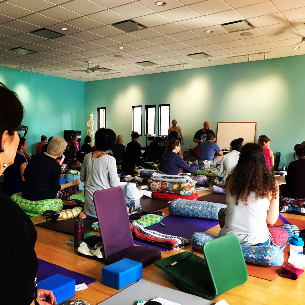 Attended Teacher Training ~ Yoga and Self-Care Strategies for Chronic Pain