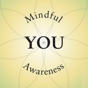 Mindful Awareness and YOU on the Wheel of Health
